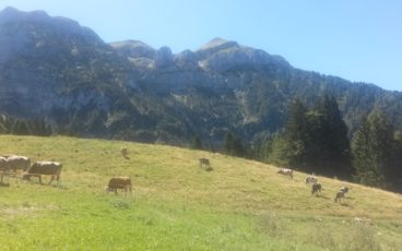 nordic walking Val Piana