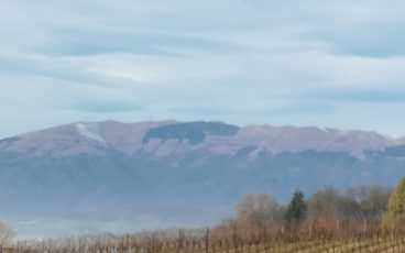 nordic walking Susegana San Daniele, Colle della tombola e Collalto