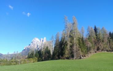 nordic walking a Suoni delle Dolomiti con Malika Ayane